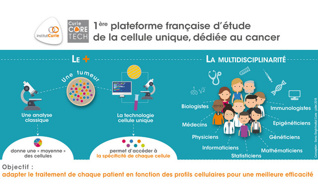 Single Cell Infographie